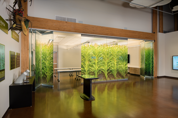 Designs that Inspire: 5 Glass Wall Design Ideas for Office ...